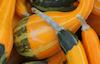 Gourds at an Apple Festival © Miriam A. Kilmer