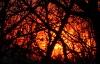Spring Sunrise, Shenandoah Valley © Miriam A. Kilmer