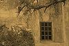 Carmel Mission Basilica © Miriam A. Kilmer