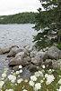 Nova Scotia 4 © Miriam A. Kilmer