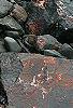 Rocks, Bay Of Fundy © Miriam A. Kilmer